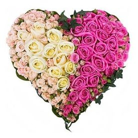 Сердце из белых и розовых роз