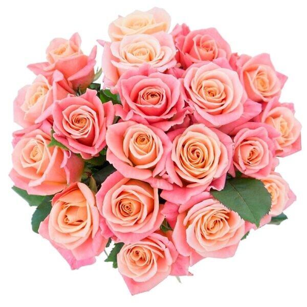 розовая роза мисс пигги в букете