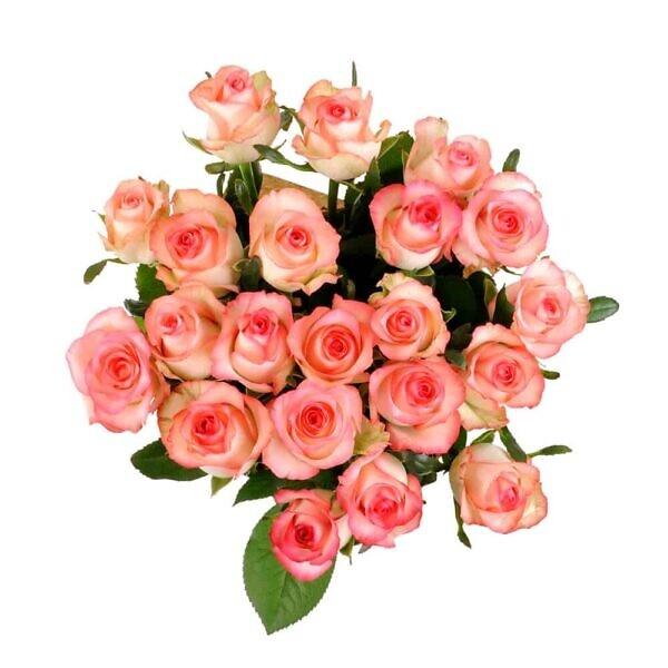 роза розовая Джамиля в букете