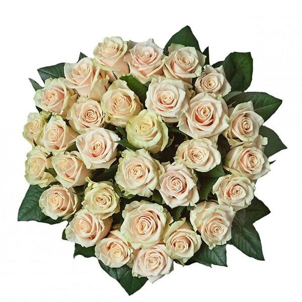 роза талея в букете