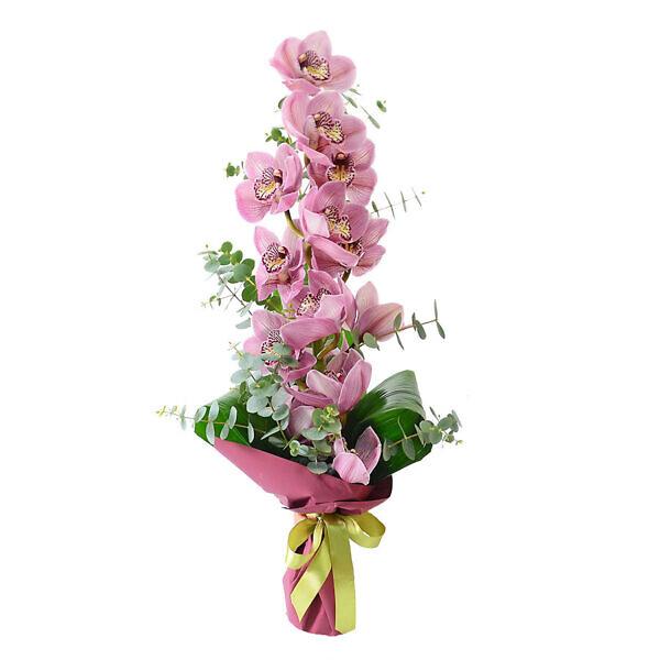 букет из розовой орхидеи