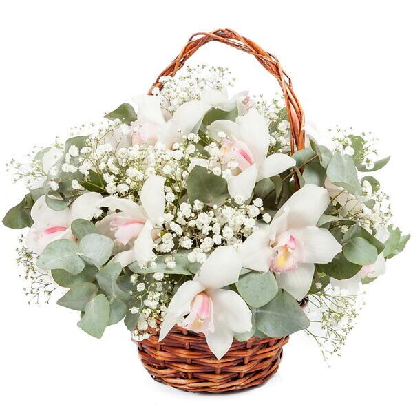 корзина белых орхидей