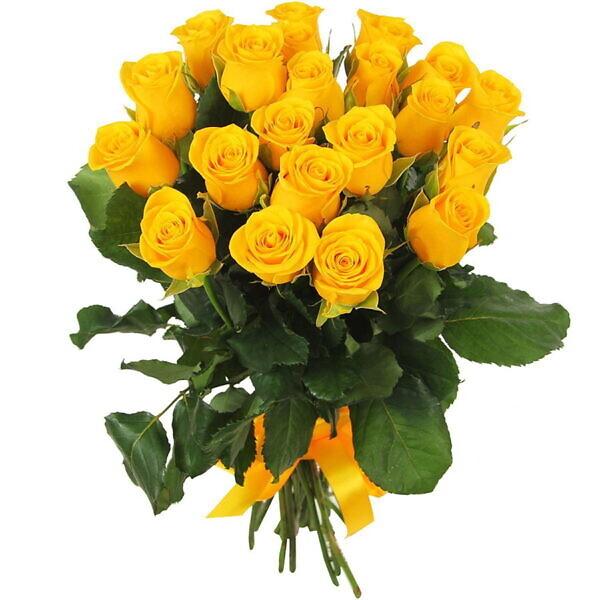 21 жёлтая роза